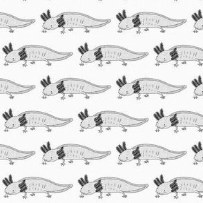 Axolotl // monochrome aquatic pet