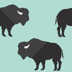 Buffalo Stripes on Aqua