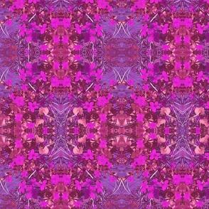 Purple Rain Evening Flower