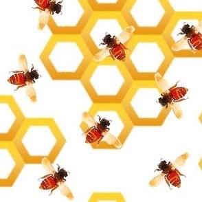 Worker Bees with Hexagon Honeycomb