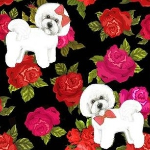 Bichon Frise on  floral