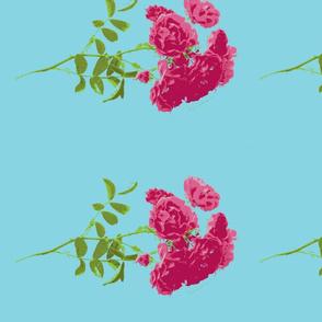 tee rose turquoise