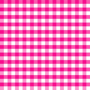PinkGinghamsmall