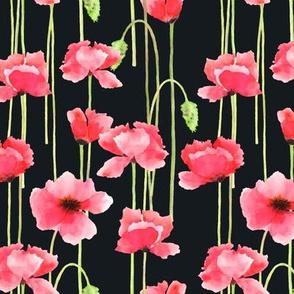 Watercolor Poppies Black