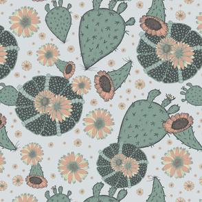 Peyote Cactus on light background