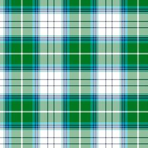 blue spruce tartan style 2