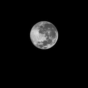 "two-yard B&W 18"" supermoon"