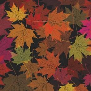 Dancing in the Dark Maple Leaves