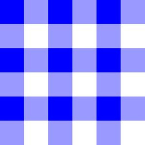 One Inch Blue and White Gingham Check