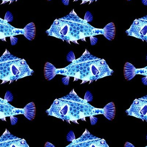 FUNNY GLOWING LITTLE FISH PHOSPHORESCENT blue on black