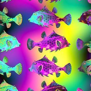 FUNNY FISH RAINBOW PSYCHEDELIC UNDERWATER WORLD OCEAN YELLOW FUCHSIA GREEN
