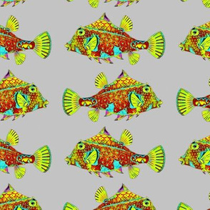 FUNNY LUMINOUS LITTLE FISH GREEN ORANGE ON GREY