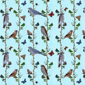 ivy_repeat_with_birds__small_2_pale_blue_background