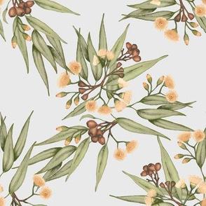 Gumnuts & Eucalyptus, Peach Grey Green