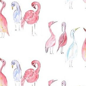 migration birds, pink, white