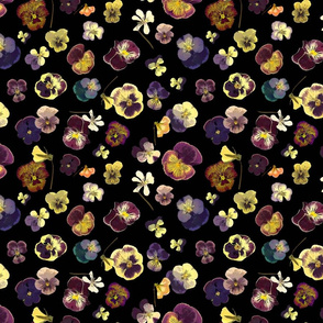 pansy smaller scale