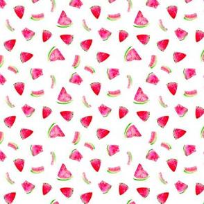 Watercolor watermelons mini
