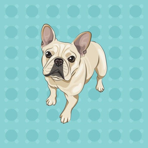 french_bulldog_blue