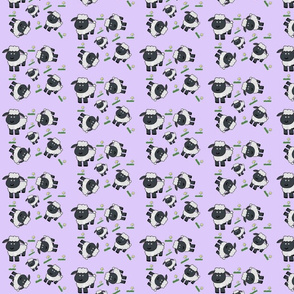 Black_sheep_purple