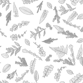 sketchbook leaves