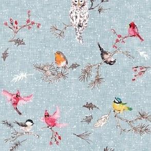 Snö birds (blue)