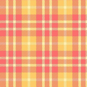 #SAGE Beach Colors - Warm Plaid