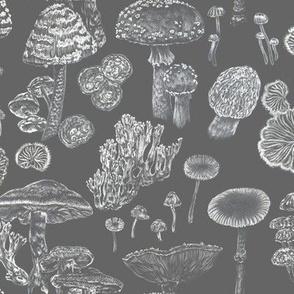 Mushrooms Grey White Pattern