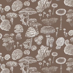 Mushrooms Brown White