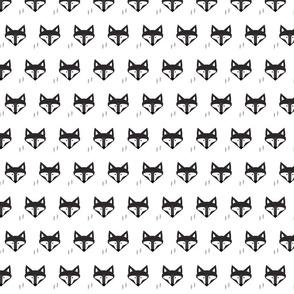 Scandinavian Fox Black And White