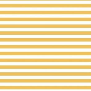 mimosa stripes