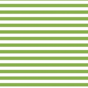 greenery stripes
