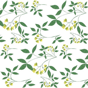 Botanical Woodcut: Tea Towel Orientation