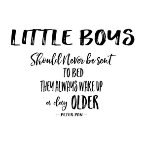 "21""x18"" Little Boys Quote / FAT QUARTER"