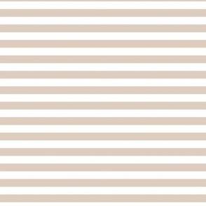 sand dollar stripes