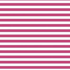fuchsia rose stripes