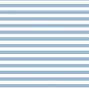 cerulean stripes