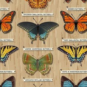 Perfect Butterflies