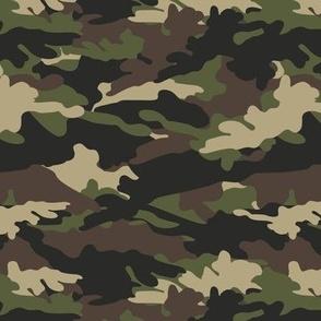 C2 - camouflage