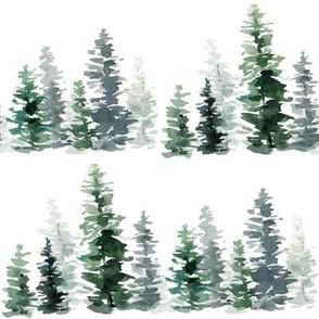 Forest Fir Trees