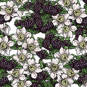 Blackberries and Blossoms - Tossed - White - Medium Scale