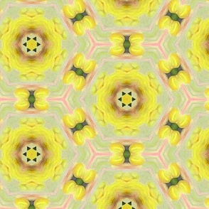 Lemon Circles Floral