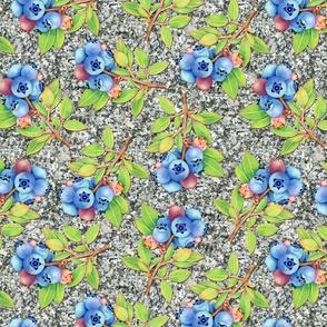 Blueberry granite repeat 14 200