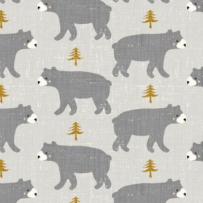 gray bears