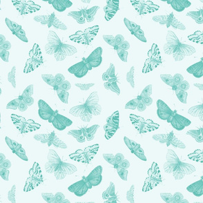 Butterflies in Robin Egg Blue