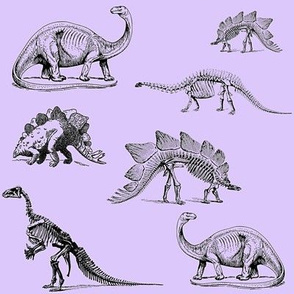 Museum Animals, Dinosaur Skeletons, Dinos on Purple Lavender