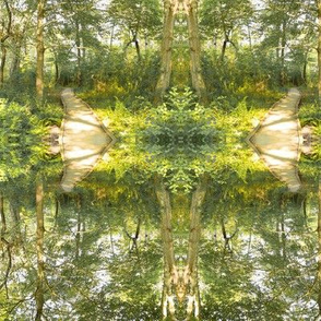 Woodland Path Mirrored