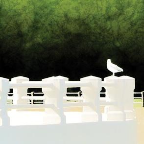 Seagull, L