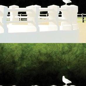 Seagull, S