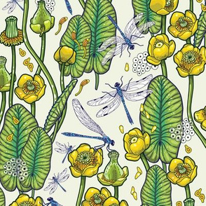 yellow water lilies and dragonflies