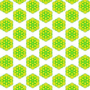 Honey-Sweet Hexagons